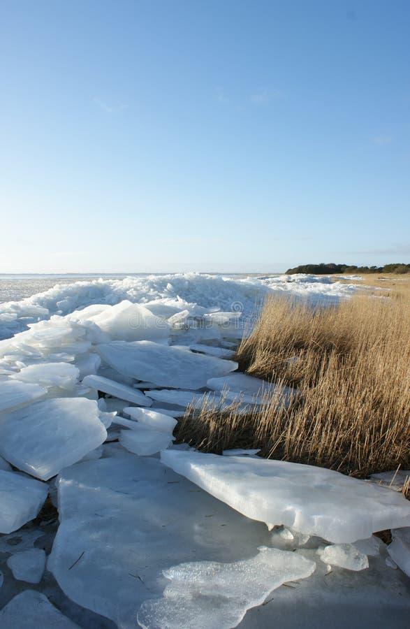 Паковый лед и луг стоковое изображение