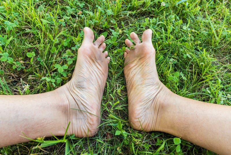 Пакостные подошвы взрослых ног на зеленой траве стоковое фото