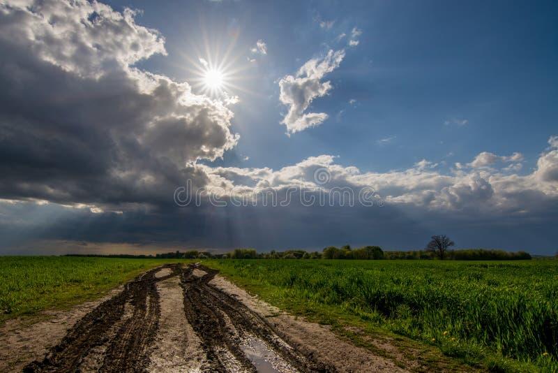 Пакостный путь к полю стоковое фото