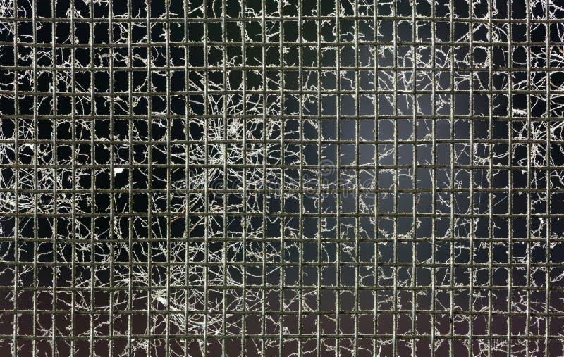 Пакостный экран провода москита стоковое изображение rf