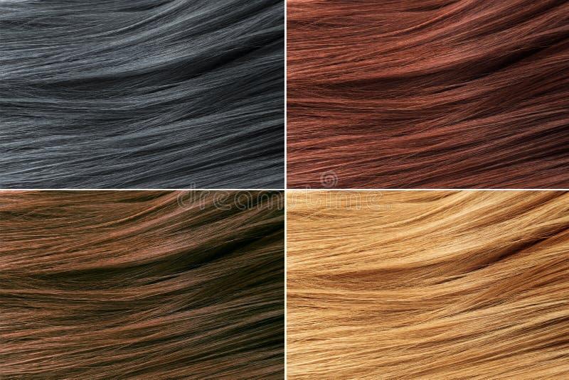 Палитра цветов волос Предпосылка текстуры волос, комплект цветов волос подкраски Покрашенные образцы цвета волос стоковое изображение