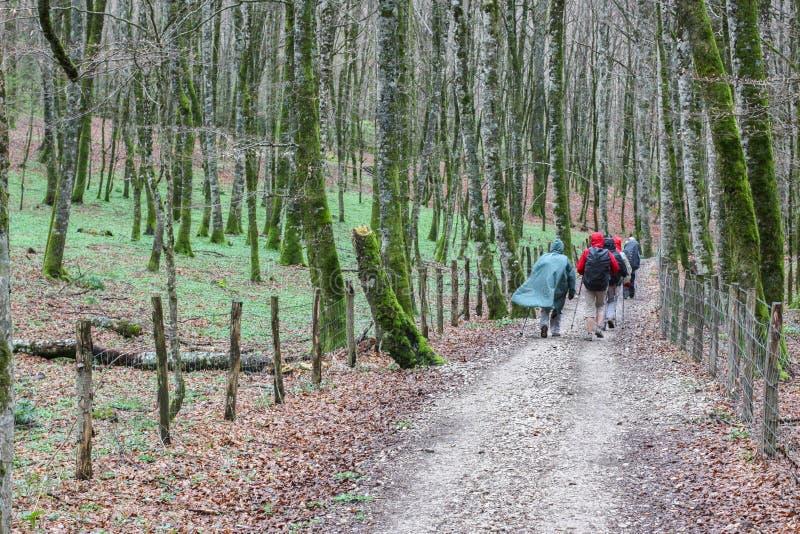 Паломники на французском пути Camino de Сантьяго, Испании стоковые изображения