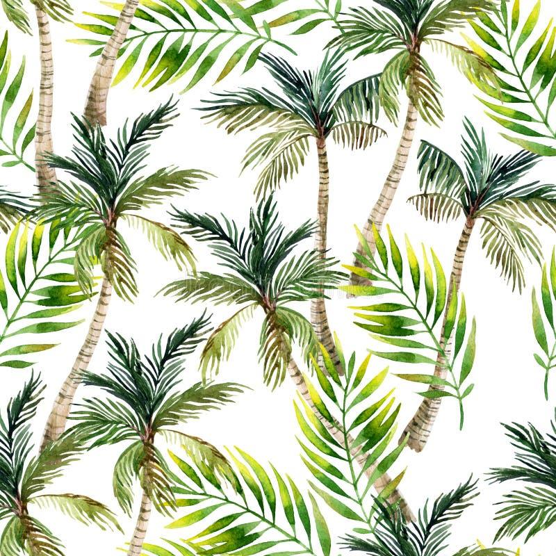 Пальма акварели и картина листьев безшовная ладонь предпосылки тропическая иллюстрация вектора