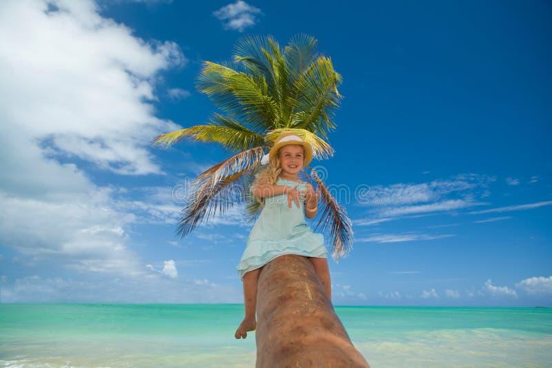 пальма девушки стоковое изображение rf