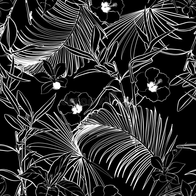Пальмы леса черно-белого плана темные и тропический f иллюстрация штока