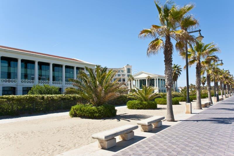 Пальмы на пляже в Валенсия. стоковые изображения