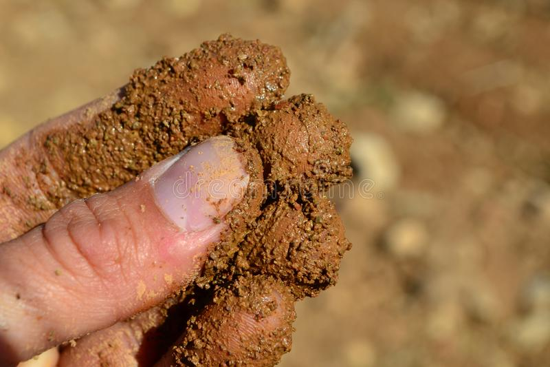 Пальцы чувствуя коричневую почву стоковые изображения rf