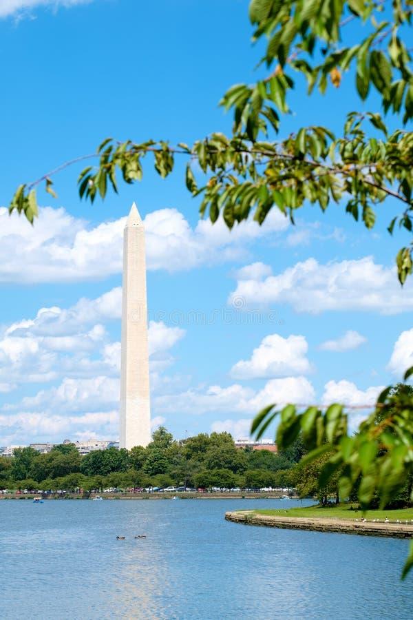 Памятник Вашингтона увиденный через приливный таз в Вашингтоне стоковая фотография rf