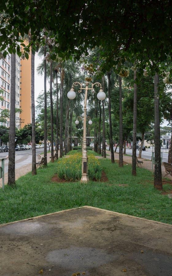 Памятник в гражданском квадрате города Goiania, Бразилии стоковые фото