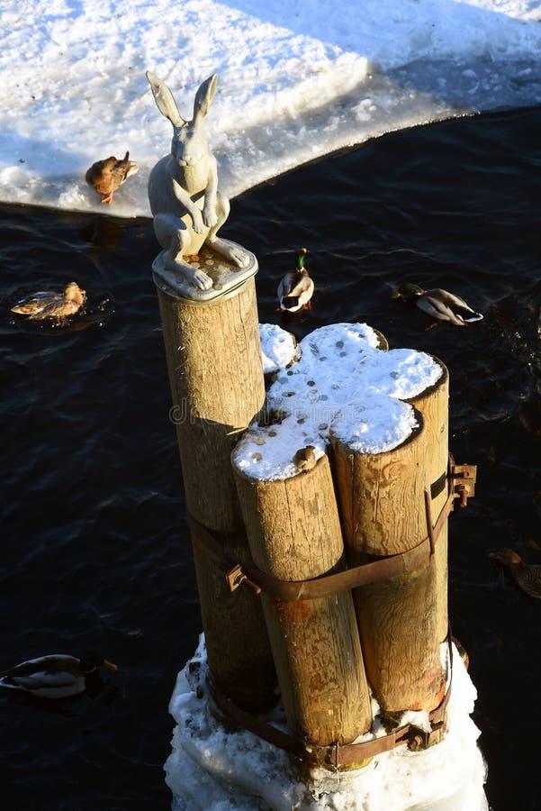 Памятник к зайцу в крепости Питера и Пола в Санкт-Петербурге, России стоковое изображение rf