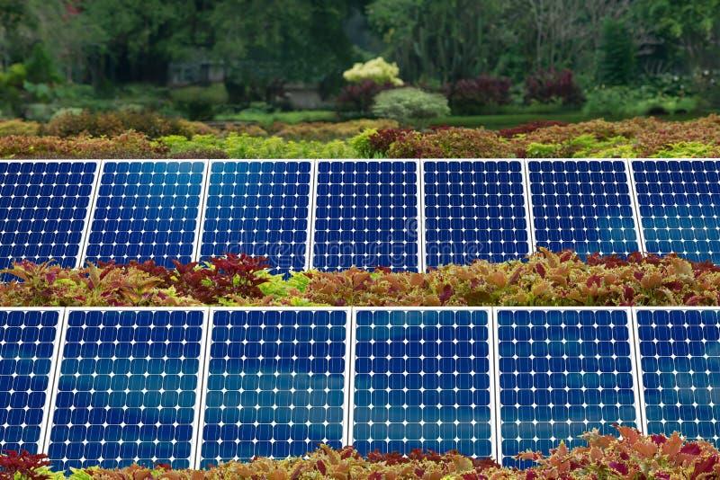 панель сада принципиальной схемы солнечная стоковые изображения