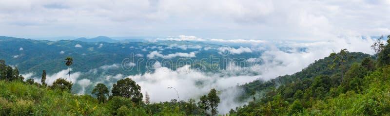 Панорама ландшафта на национальном парке, поле против голубого неба a стоковые фотографии rf