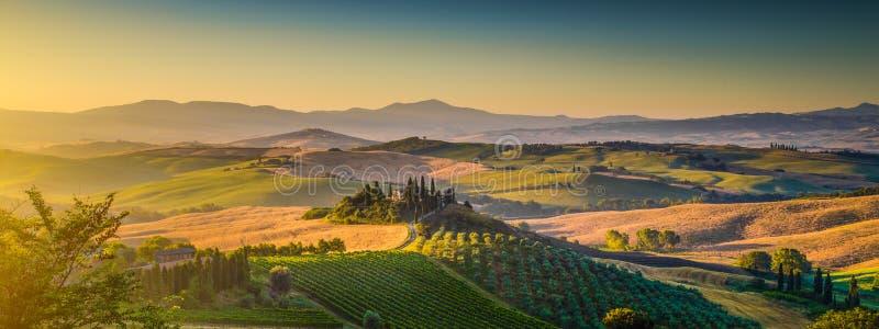Панорама ландшафта Тосканы на восходе солнца, dOrcia Val, Италии стоковые фото
