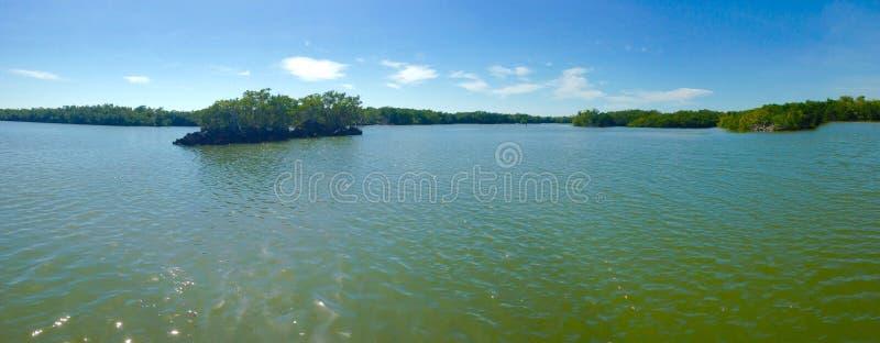 Панорама болотистых низменностей стоковое изображение rf