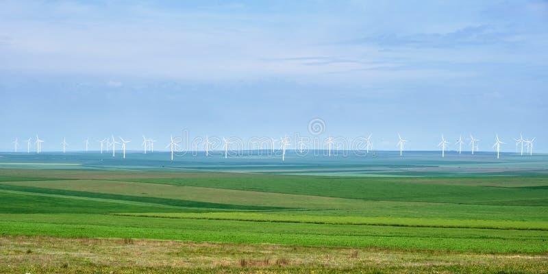 Панорама ветротурбин со слоями зеленых полей пшеницы и рож аграрных, на сизоватом небе - космосе для текста над и под стоковая фотография rf