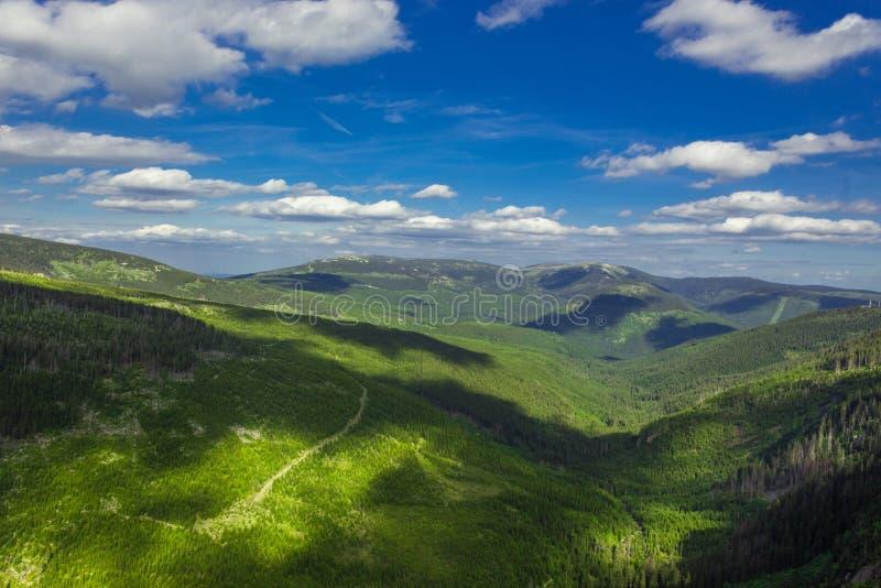 Панорама гигантской горы стоковое фото rf