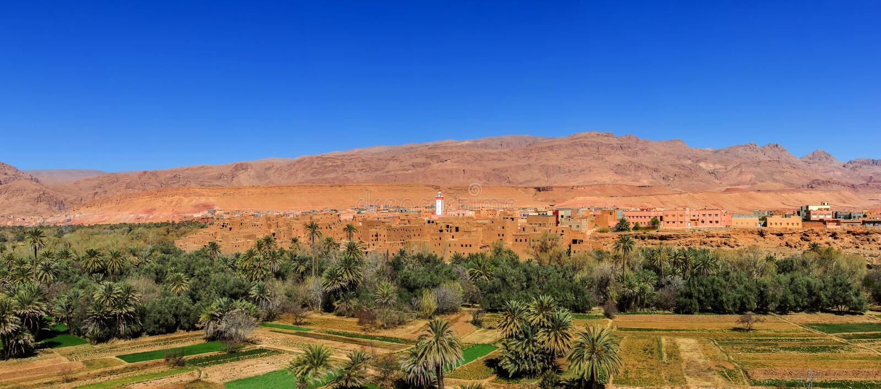 Панорама городка и оазиса Tinerhir, Марокко стоковые фотографии rf