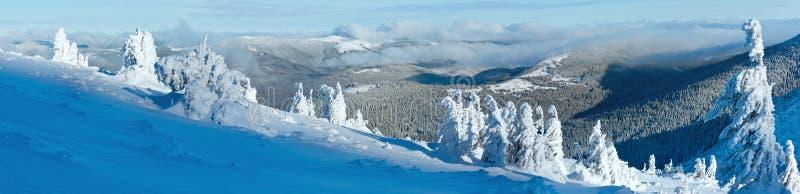 Панорама горы зимы с снежными деревьями стоковое изображение