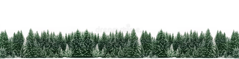 Панорама елевого леса дерева покрытого свежим снегом во время времени рождества зимы стоковое фото rf
