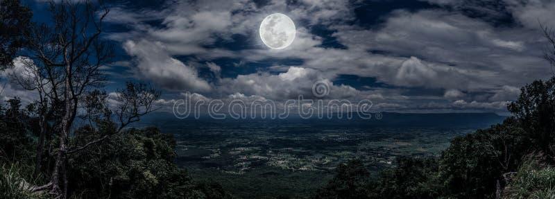 Панорама дерева и валунов против неба nighttime с пасмурным стоковые изображения rf