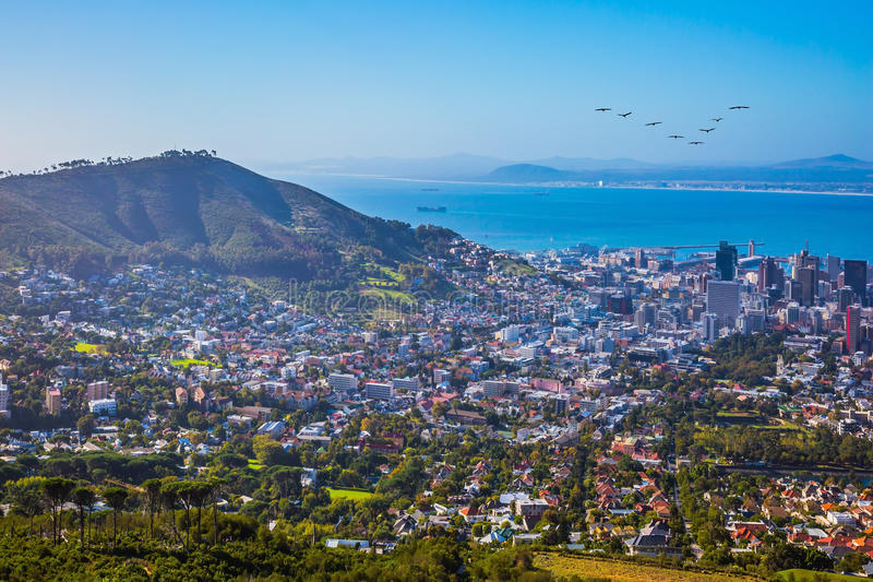 Панорама Кейптаун стоковое фото