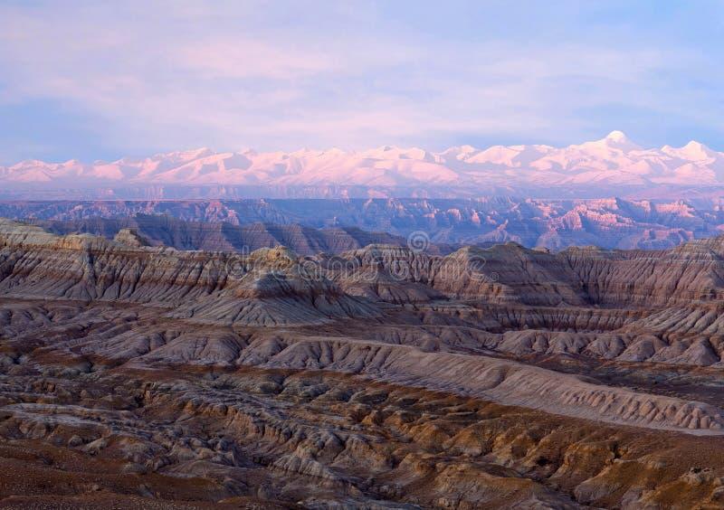 Панорама леса национального Geopark земли, Тибета стоковая фотография rf
