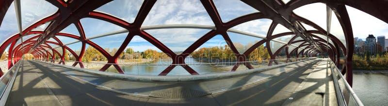 Панорама моста мира в Калгари, Канаде стоковое изображение rf