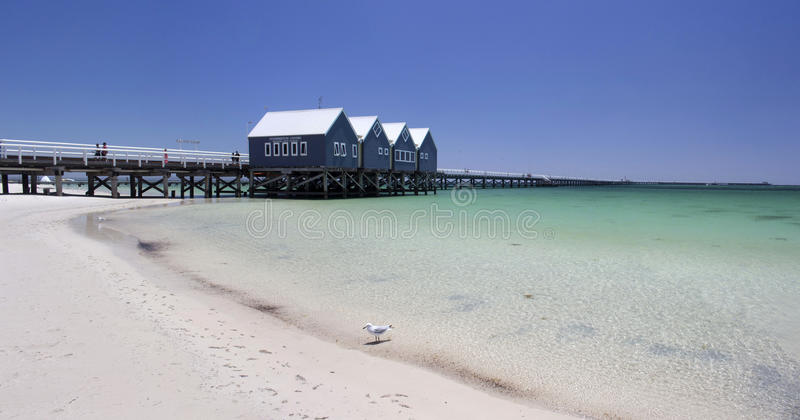 Панорама молы западной Австралии Busselton стоковое изображение