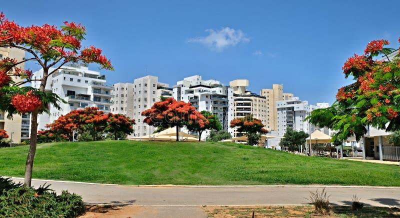 Панорама нового жилого района с современными домами и большой благоустраивать территории города Holon в Израиле стоковое изображение