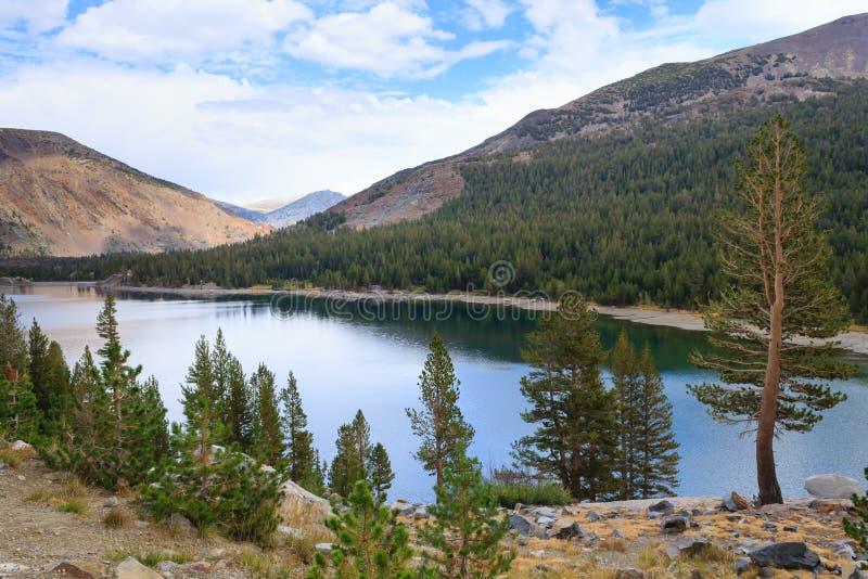 Панорама от национального парка Yosemite стоковые изображения