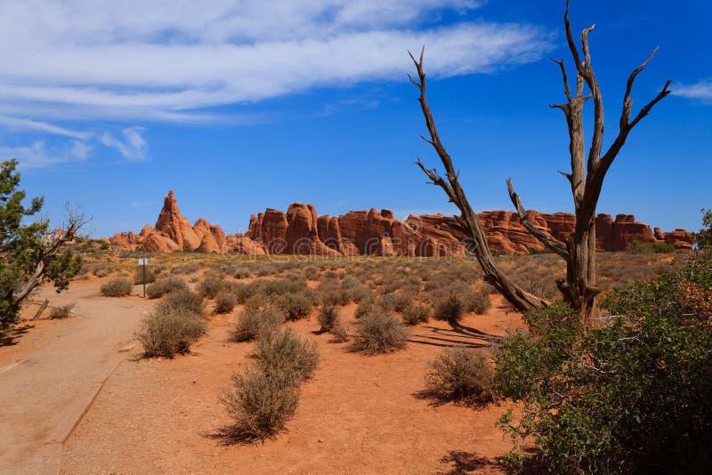 Панорама от сводов национального парка, Юты США стоковое фото rf