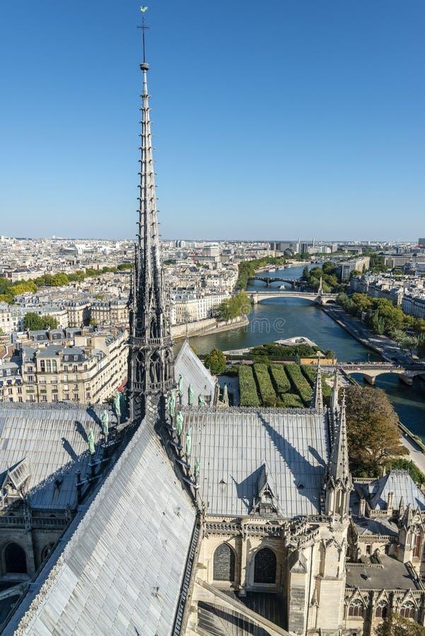 Панорама Парижа от Нотр-Дам стоковые изображения rf