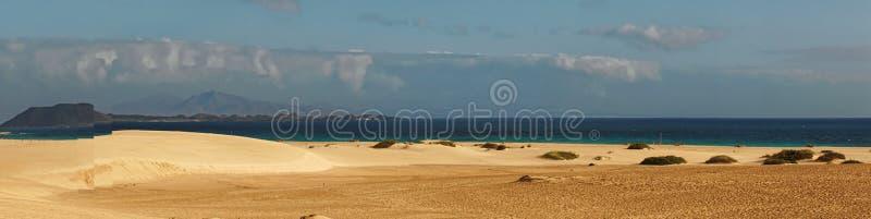Панорама песчаного пляжа стоковое фото