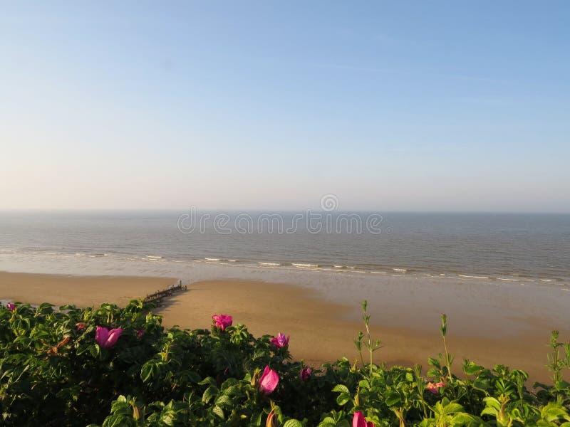 Панорама пляжа в Норфолке, Англии стоковые фотографии rf