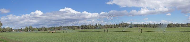 Download Панорама, самоходные спрейеры полива Стоковое Фото - изображение насчитывающей распылять, оросите: 33736638