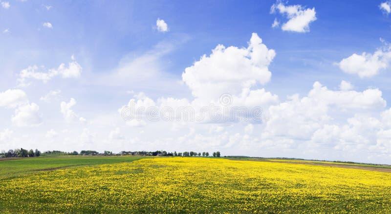 панорама сельская стоковое изображение