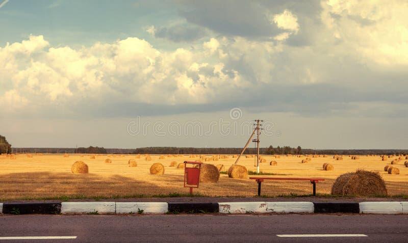 Панорама сельского ландшафта, желтого поля с снопами ha стоковая фотография rf