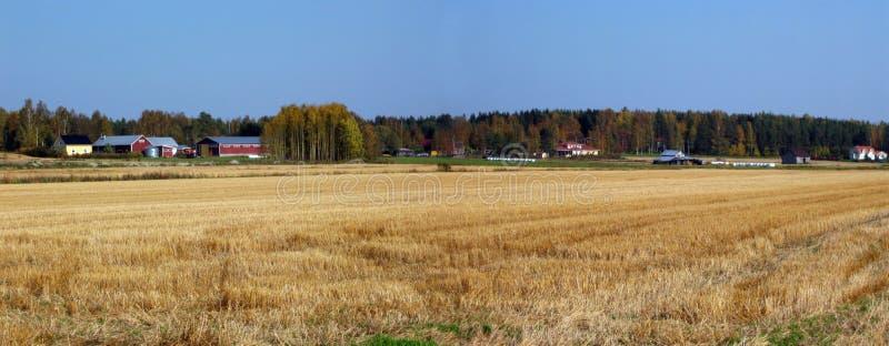 панорама сельской местности осени стоковые фотографии rf