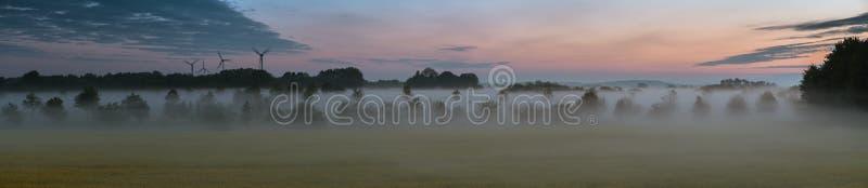 Панорама туманного канола поля стоковое фото rf