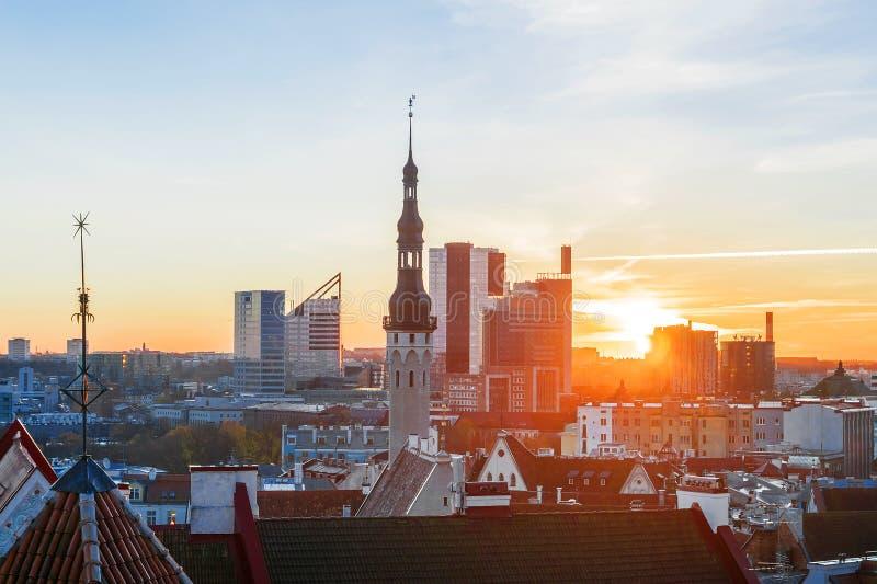 Панорама утра Таллина, Эстонии стоковая фотография