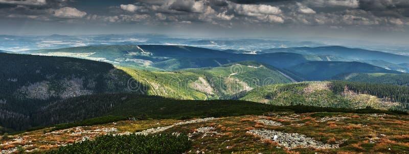 Панорама холмов покрытых с зеленым лесом стоковые фотографии rf