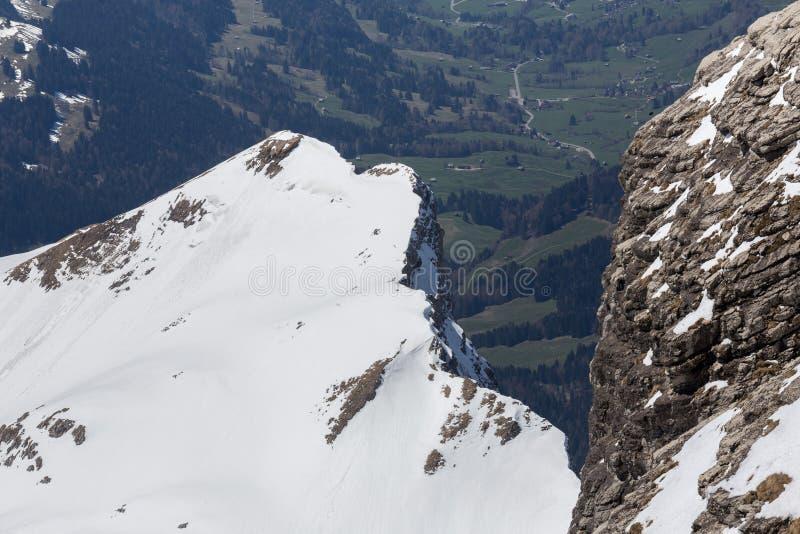панорама Швейцарии горной цепи стоковые фото