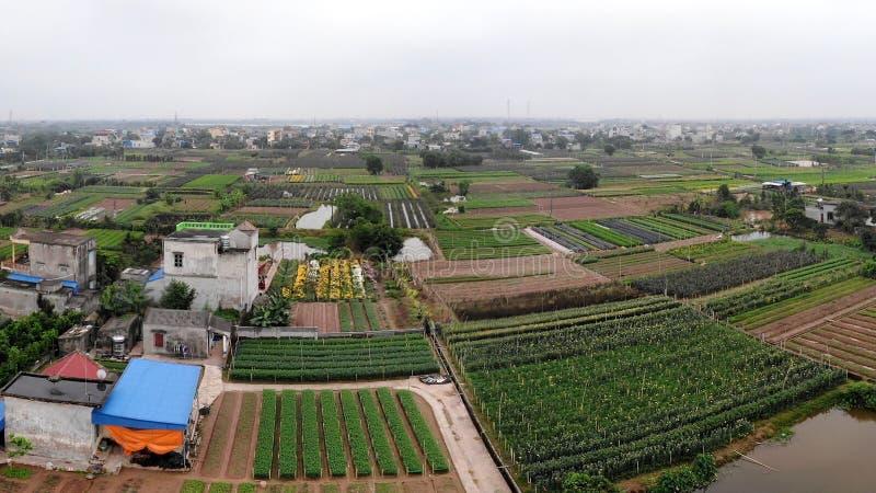 Панорамная красота деревни берега реки стоковое фото rf