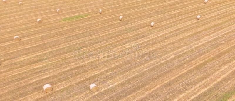 Панорамная связка взгляд сверху hays на ферме мозоли после сбора в Austi стоковое изображение