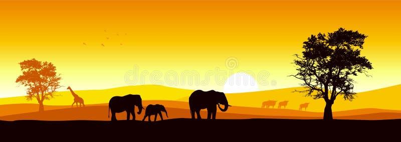 панорамное сафари иллюстрация штока