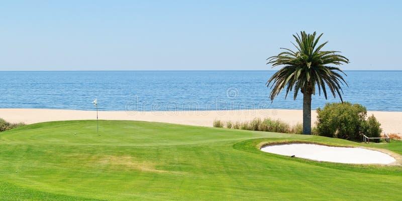 Панорамные взгляды поля для гольфа к морю и пальмам. стоковые изображения rf