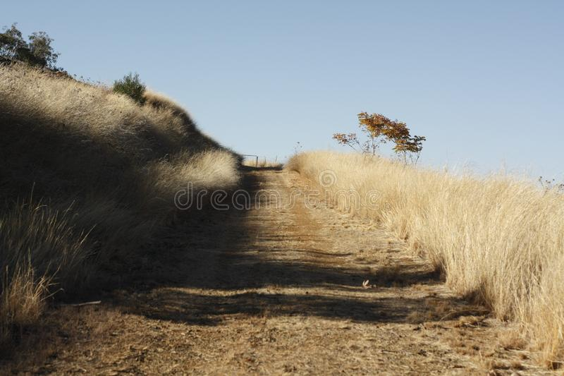 панорамные виды дороги и ворот стоковые изображения rf