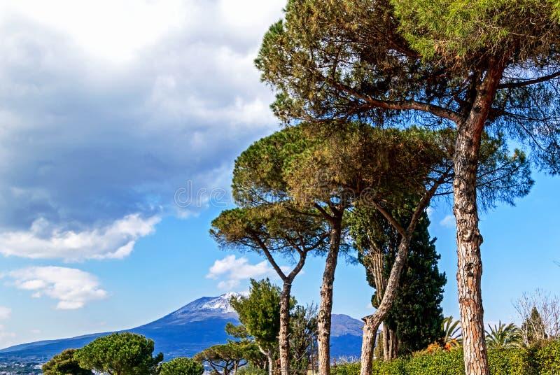 Панорамный взгляд - вулкан Неаполь и Vesuvius, Италия стоковое фото rf