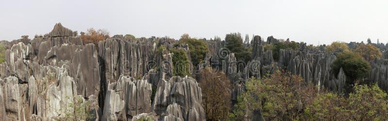 Панорамный взгляд каменного леса в провинция Kunming, Юньнань, Китай также знает как Shilin стоковые фото