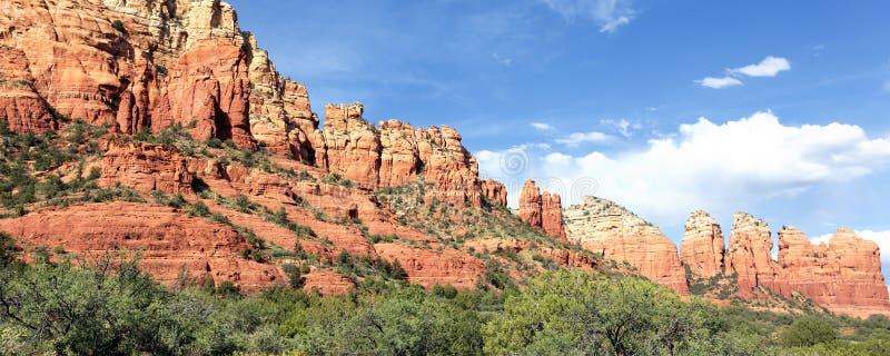 Панорамный взгляд ландшафта глуши стоковые изображения